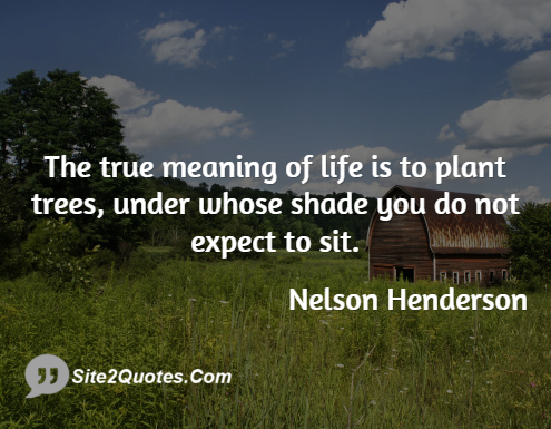 Life Quotes - Nelson Henderson