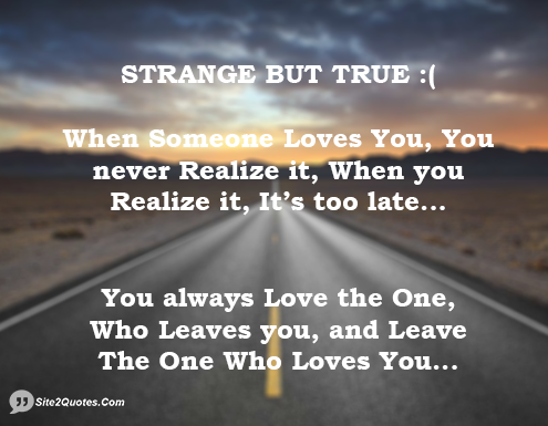 Love The One That Loves You Quotes Magnificent Strange But True When Someone Loves You You Never Realize It When